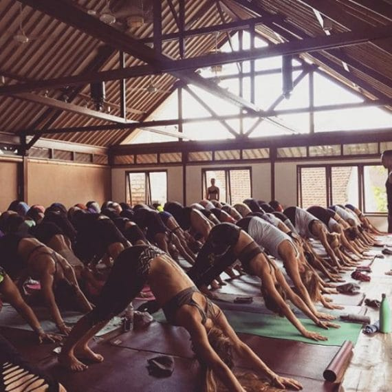 formacion de yoga - yuliayogi